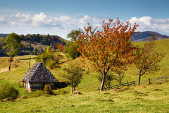 Autumn in the Carpathian Mountains Royalty Free Stock Photography