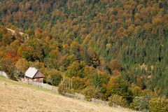 Autumn in the Carpathian Mountains Stock Photography