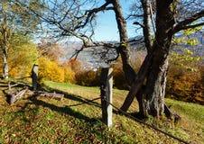 Autumn Carpathian mountain, Rakhiv, Ukraine. Autumn Carpathian Mountains landscape with multicolored yellow-orange-red-brown trees on slope and Rakhiv town in stock photos