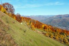 Autumn Carpathian mountain, Rakhiv, Ukraine. Autumn Carpathian Mountains landscape with multicolored yellow-orange-red-brown trees on slope and  Rakhiv town in Royalty Free Stock Photos