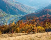Autumn Carpathian mountain, Rakhiv, Ukraine. Autumn Carpathian Mountains landscape with multicolored yellow-orange-red-brown trees on slope and  Rakhiv town and Stock Photos
