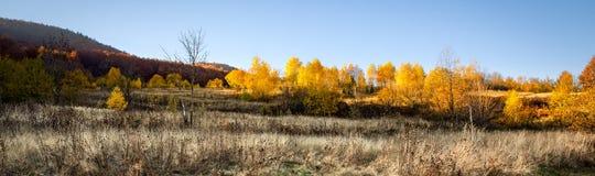 Autumn in Carpathian Mountains Royalty Free Stock Photo
