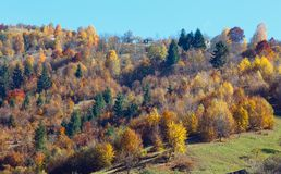 Autumn Carpathian mountains Ukraine. Stock Image