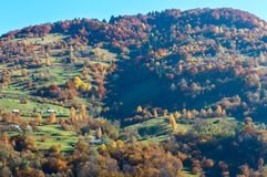 Autumn Carpathian mountains, Ukraine. Autumn Carpathian Mountains landscape with multicolored trees and mountain village outskirts on slope Rakhiv district Stock Images
