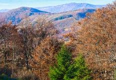 Autumn Carpathian sikt Royaltyfri Foto