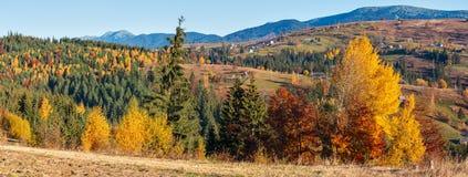 Autumn Carpathian by, Ukraina Royaltyfria Foton