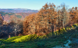 Autumn Carpathian view. Royalty Free Stock Images