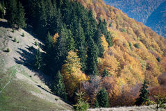 Autumn in the carpathians Stock Photo