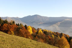 Autumn. Carpathians, Ukraine, Europe Royalty Free Stock Image