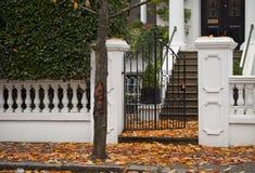 Autumn Carpeting. Royalty Free Stock Image