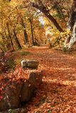 Autumn Carriage Road Royalty Free Stock Photo