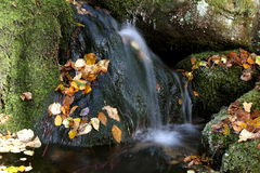 Autumn cascade Royalty Free Stock Photography