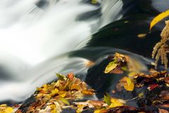 Autumn Cascade. Closeup of cascade with autumn leaves Stock Photography