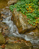 Autumn Cascade Photographie stock libre de droits