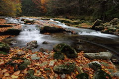 Autumn cascade river Stock Images