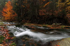 Autumn cascade river Stock Photos