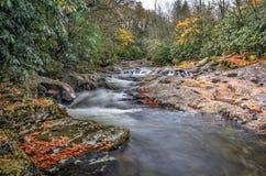 Autumn Cascade. A small cascade along a creek in North Carolina in autumn on a rainy day stock photography