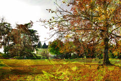 Autumn castle Royalty Free Stock Photography