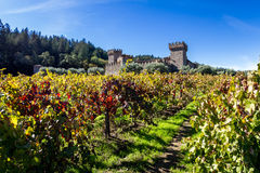 Autumn at the castle. Napa Valley, California - November 08: Tourist attraction, the Castello di Amorosa, a beautiful vineyard and winery in autumn. November 08 Royalty Free Stock Photography