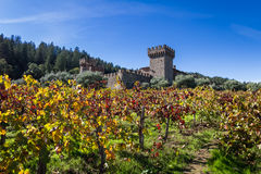 Autumn at the castle. Napa Valley, California - November 08: Tourist attraction, the Castello di Amorosa, a beautiful vineyard and winery in autumn. November 08 Stock Photo