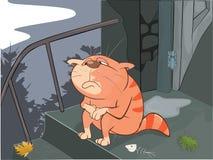 Autumn Cat Cartoon Stock Photos