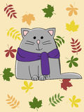 Autumn cat Stock Images