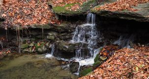 Autumn Cataract Loop minúsculo - cachoeira da queda filme