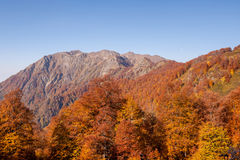 Autumn Caucasian mountains. Beautiful Caucasian mountains in autumn Royalty Free Stock Photography