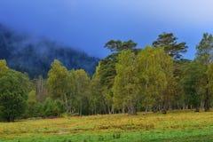 Autumn in Caucasus. This is colorful morning in Caucasus valley in autumn Stock Photo
