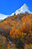Autumn in Caucasus royalty free stock images