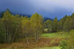 Autumn in Caucasus. This is sad morning in Caucasus mountains in autumn Royalty Free Stock Photos