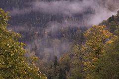Autumn in the Caucasus. Sochi Region. The surroundings of Krasnaya Polyana Royalty Free Stock Photo