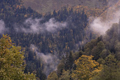 Autumn in the Caucasus. Sochi Region. The surroundings of Krasnaya Polyana. Russia Stock Photo