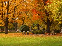 Autumn cemetery stock image