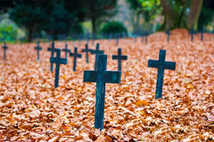 Autumn cemetery crosses. Cemetery in autumn colors in Ulm, Germany Stock Photography