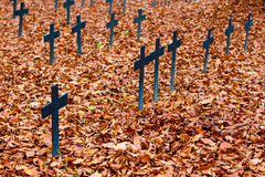 Autumn cemetery crosses. Cemetery in autumn colors in Ulm, Germany Royalty Free Stock Photos