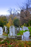 Autumn cemetery park Royalty Free Stock Photo