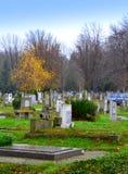 Autumn cemetery park Stock Photos