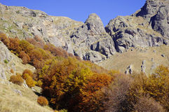 Autumn in Central Balkan, Bulgaria Royalty Free Stock Image