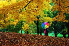 Autumn in central park, manhattan, new york. Two people with colorful umbrella under foliage Stock Images