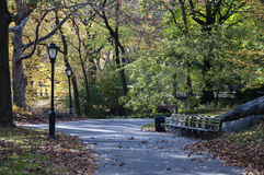 Autumn on Central Park, New York. Photo shot from inside Central Park in New York Stock Image