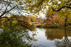Autumn in the Central Park Royalty Free Stock Image
