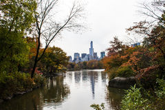 Autumn in the Central Park Stock Image