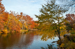 Autumn in Central Park, New York Stock Image