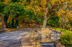 Autumn in central park in Riga Royalty Free Stock Image