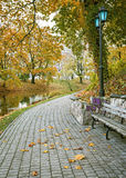 Autumn in the central park of Riga Royalty Free Stock Image