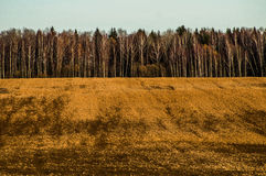 Autumn in Central Russia. Stock Photo