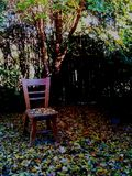 Autumn chair Royalty Free Stock Images