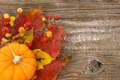 Autumn charm background with copy space Stock Photo