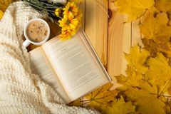 Autumn charm, chrysanthemum, book and warm scarf in leaves. Autumn charm, chrysanthemum, book and warm scarf in yellow leaves royalty free stock photos